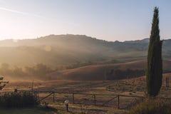 Typisk Tuscan landskap Arkivfoto