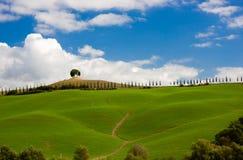 Typisk tuscan landskap med cypressvägen och trädet, Tuscany, Italien Royaltyfri Fotografi
