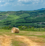Typisk tuscan liggande Royaltyfri Bild