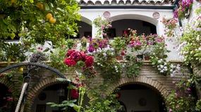 Typisk uteplatsinCordoba, Spanien, Arkivbilder