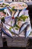 Typisk utomhus- italiensk fiskmarknad med den nya fisken och skaldjur, Arkivfoto