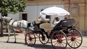 Typisk vagn häst-Ronda-Spanien Royaltyfria Foton