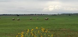 typiska baler för hö för lösa blommor för Oklahoma dag royaltyfria foton
