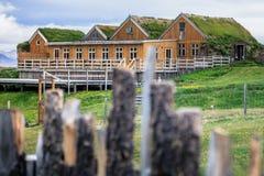 Typiska gröna hus med grastaket i Island royaltyfri bild