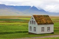 Typiska gröna hus med grastaket i Island arkivfoton