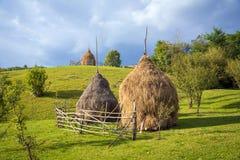 Typiska höbaler och ängar av grönt gräs och blå himmel lantlig plats Royaltyfri Foto