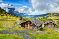 Typiska schweiziska alpina lantbrukarhem och Eiger berg, Bernese Oberland, Schweiz Royaltyfri Bild