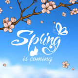 Typographic Design. Lettering Spring design on Royalty Free Stock Photo