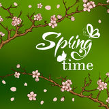 Typographic Design. Lettering Spring design with Royalty Free Stock Photography