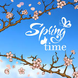 Typographic Design. Lettering Spring design with Stock Photos