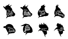 Typographic Farm animals Icons Meat Labels Stock Photo