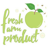 Typographic hand drawn banner with green apple, bee, flower and text for prganic farm and garden. Royalty Free Stock Photos