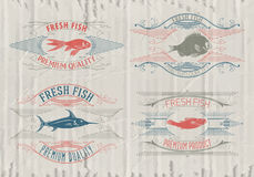 Typographical set of fish - vector. Logo, badge or label design template Royalty Free Stock Photo