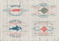 Typographical set of fish - vector. Logo, badge or label design template Stock Images