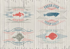 Typographical set of fish - vector. Logo, badge or label design template Stock Photography