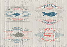 Typographical set of fish - vector. Logo, badge or label design template Royalty Free Stock Photos