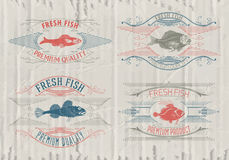 Typographical set of fish - vector. Logo, badge or label design template Royalty Free Stock Image