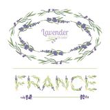 Typography slogan with lavender flower text France for t shirt printing, embroidery, design. Graphic and printed tee Stock Photos