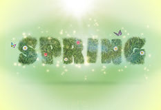 Typography spring word on a background Stock Photo