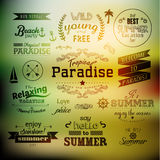 Typography Summer Holiday Quote Vector Design Royalty Free Stock Photos