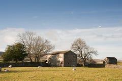 Typowa kamienna stajnia i cakle w Yorkshire dolinach Anglia Obrazy Stock