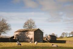 Typowa kamienna stajnia i cakle w Yorkshire dolinach Anglia Obraz Royalty Free