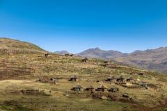 Typowa lokalna wioska w wiejskim Lesotho Fotografia Stock