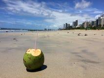 Typowa owoc od northeastern regionu Brazylia obraz royalty free
