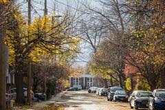 Typowa północnoamerykańska mieszkaniowa ulica w jesieni w Centretown, Ottawa, Ontario, podczas jesieni popołudnia z samochodami p obraz royalty free