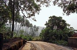 Typowa Spokojna Wiejska scena w Goa Obraz Royalty Free