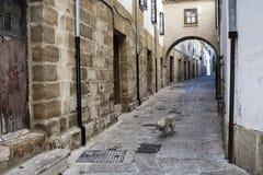Typowa ulica światowego dziedzictwa miasto w Baeza, Uliczny Barbacana obok zegarowy wierza Fotografia Stock