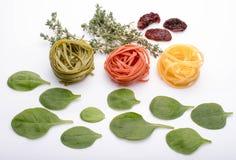 Typowa Włoska makaronu tagliatelle kolekcja trzy kolor Gr Obrazy Stock