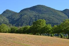 Typowe góry w francuskim drÃ'me Zdjęcie Stock