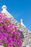 Typowi budynki nazwany Alberobello Trulli obrazy royalty free
