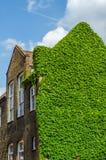 Typowi starzy Angielscy budynki, niscy ceglani domy przez narr Obraz Stock