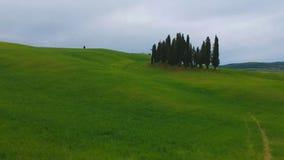 Typowi Tuscany zielonej trawy wzgórza Powietrzny trutnia wideo strzał zbiory wideo
