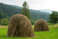 Typowi Ukraińscy haystacks obraz stock