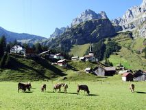 Typowo malownicza wysokogórska wioska, Urnerboden fotografia royalty free