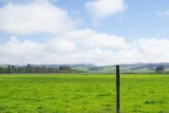 Typowo Południowej wyspy wiejska scena zdjęcie stock