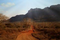 Typowy afrykanina krajobraz w Kenja Obrazy Royalty Free