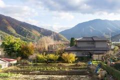 Typowy Japońskiego stylu dom w przedmieściu przy spadkiem Zdjęcia Stock