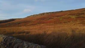 Typowy krajobraz przy Szczytowym Gromadzkim parkiem narodowym w Anglia zbiory wideo