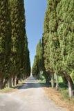 typowy krajobrazowy Tuscan zdjęcia stock