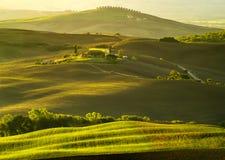 typowy krajobrazowy Tuscany Obrazy Stock