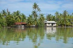 Typowy polinezyjczyka domu brzeg Francuski Polynesia fotografia stock