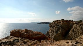 Tyran de cap sur l'île d'Ibiza, Baléares clips vidéos
