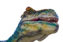 Tyrannosarie dinosauriehuvuddel på isolerad vit bakgrund arkivbild