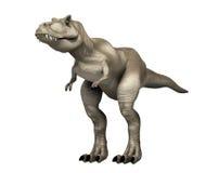 Tyrannosarie Rex Royaltyfria Bilder