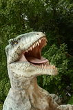 Tyrannosarie Rex Royaltyfri Foto
