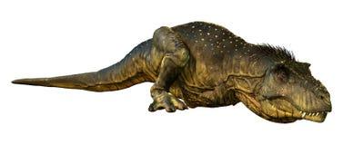 tyrannosarie Rex för tolkning 3D på vit royaltyfri illustrationer